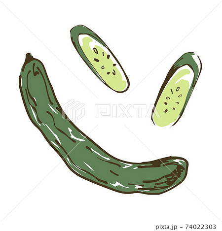 きゅうり 野菜の手描きスケッチイラスト 74022303