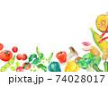 水彩イラスト 緑黄色野菜 74028017