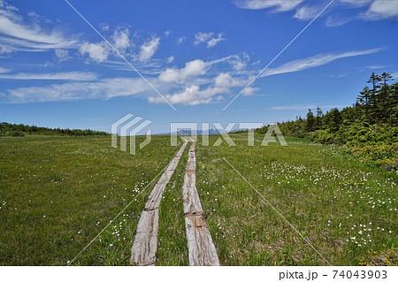 田代山湿原の木道と青空と会津駒ヶ岳 74043903