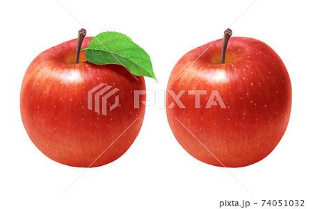 りんご イラスト リアル 74051032