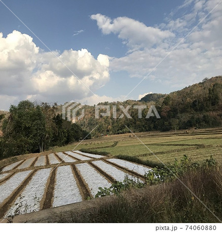 ミャンマーの自然と田舎の田園風景 74060880