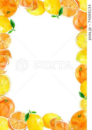 オレンジ 柑橘系 フレーム 74069134