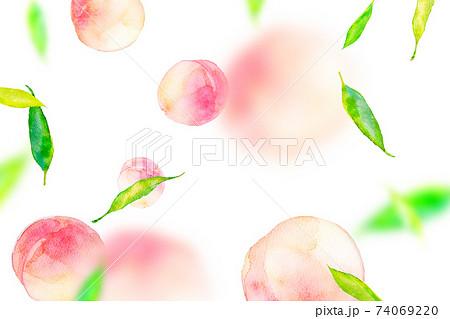 水彩イラスト 桃 背景素材 74069220