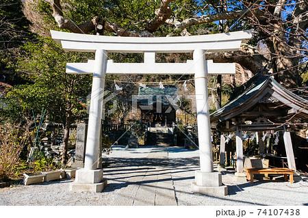 神奈川県鎌倉市 御霊神社(権五郎神社) 74107438