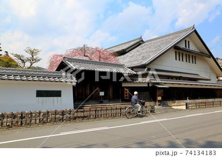 春の水門川・63(岐阜県大垣市) 74134183