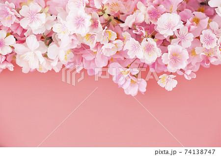 桜 74138747