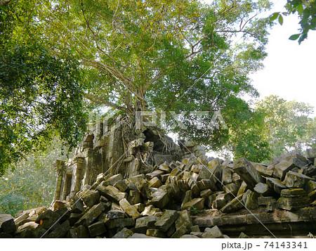 まるで天空の城ラピュタなベンメリア遺跡(カンボジア) 74143341