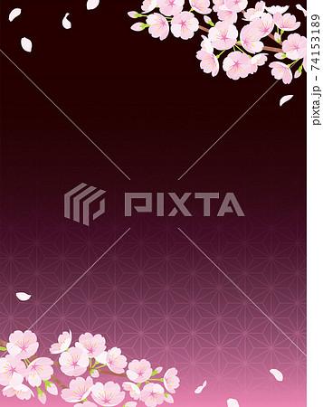 桜の背景素材 夜桜 和柄 74153189