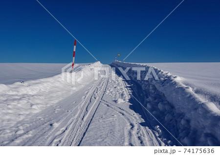 雪深い美瑛の丘の道(北海道 美瑛町) 74175636