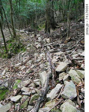龍野古城跡の崩れた石垣/鶏籠山(兵庫県たつの市) 74176664