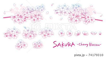 桜のイラストパーツ素材セット 線画グラデーション 74179310