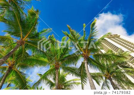 ハワイ、ワイキキビーチのホテルと椰子の木 74179382