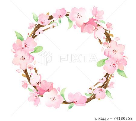 手描き水彩 桜の枝 二重円フレーム イラスト 74180258