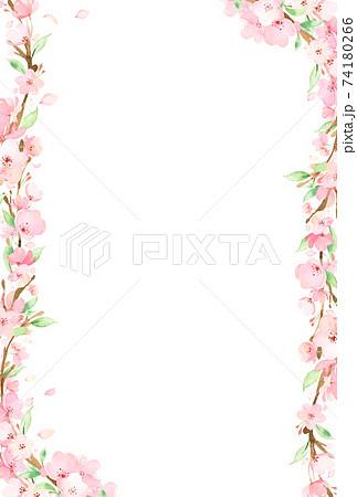 手描き水彩|桜の枝 フレーム イラスト 74180266