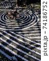 枯山水庭園に彩りを添える桜の花びら 74186752