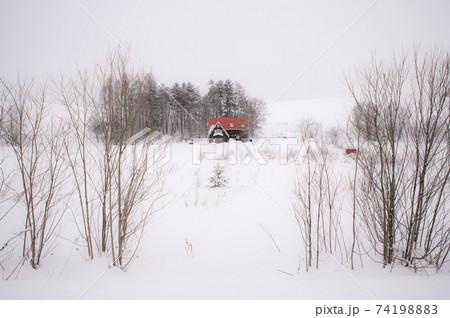 冬美瑛赤い屋根のある影絵のような世界 74198883