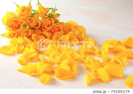 黄色いバラの花束とこぼれた花びら 74200174