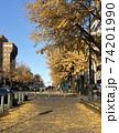 日本大通りの銀杏並木 74201990
