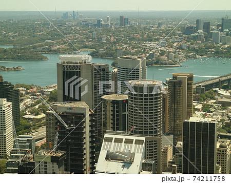 シドニータワーから望む世界三大美港 74211758