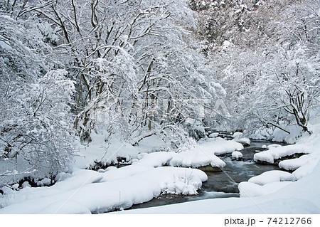 雪化粧した樹々と渓流:八重滝周辺(島根県雲南市) 74212766