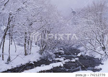 粉雪が降り積もる樹々と渓流:八重滝周辺(島根県雲南市) 74212770