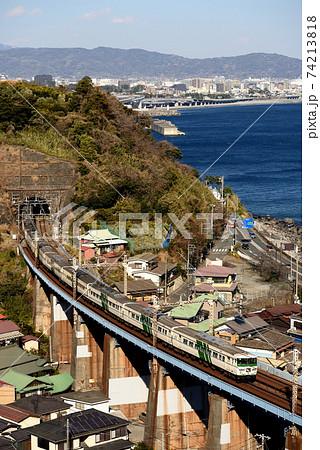 小田原市街地をバックに走る185系特急踊り子 74213818