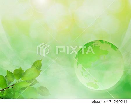 新緑(背景素材) 74240211