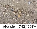 海洋プラスチック問題 74242050