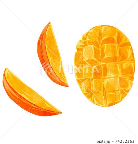 マンゴーの手描き水彩風イラスト 74252263