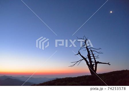 日本百名山の一つ「剣山」近く「一の森」の夜 74253578