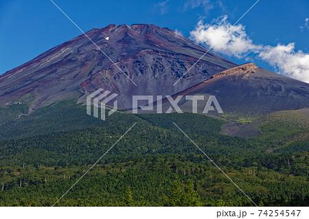 水ヶ塚から見る富士山と宝永火口 74254547