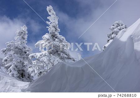 福島県南会津郡檜枝岐村にある日本百名山の冬期会津駒ヶ岳の駒ノ小屋の樹氷とシュラカブ 74268810