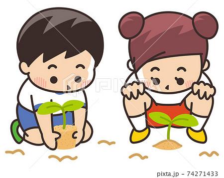 苗を植える子供 74271433