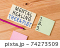 Text sign showing Mental Healing Therapist 74273509