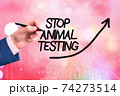 Conceptual hand writing showing Stop Animal 74273514