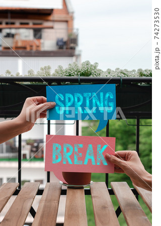 Conceptual hand writing showing Spring Break 74273530