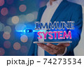 Handwriting text Immune System. Concept meaning a 74273534