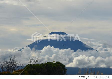 雨上がりの大涌谷から眺める雲海と富士 74275274