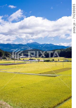 霧島連山をバックに秋の田園地帯 74289065
