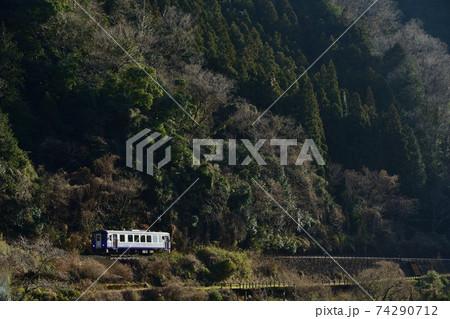 車体を輝かせて走る関西本線の列車 74290712