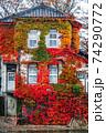 紅葉したナツヅタで絡み覆われた建物 74290772
