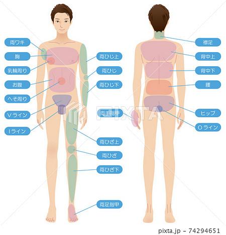 男性の身体 脱毛箇所 美容 裸 全身 74294651