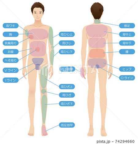 男性の身体 脱毛箇所 美容 裸 全身 74294660