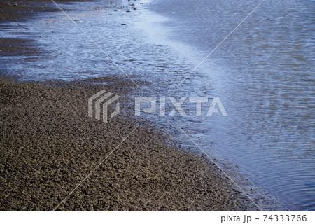 冬の水辺 水面のさざ波と水位の下がった沼の岸辺 74333766