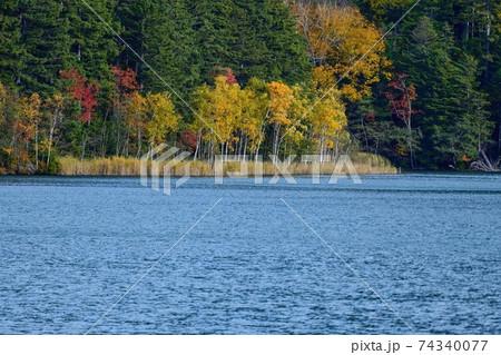 ちょうど見頃の紅葉とオンネトーブルーの湖の情景@北海道 74340077