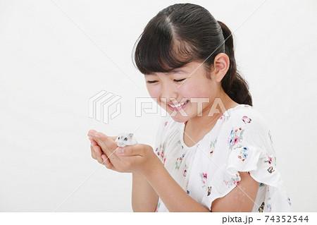 ハムスターを手に持つ女の子 74352544