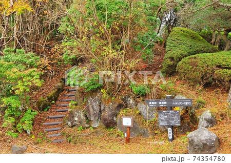 箱根町 箱根ハイキングコースの長尾峠・湖尻峠登り口 74354780