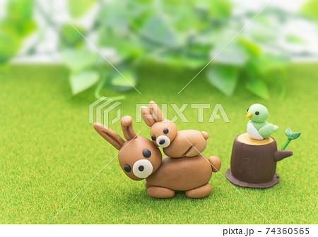 春の草原イメージ 植物と動物たち 74360565