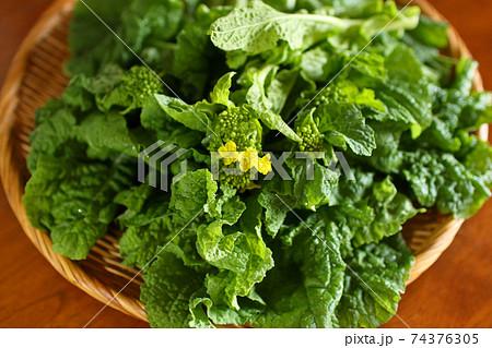 朝摘み野菜 テーブルの上のざるに乗った菜の花 74376305