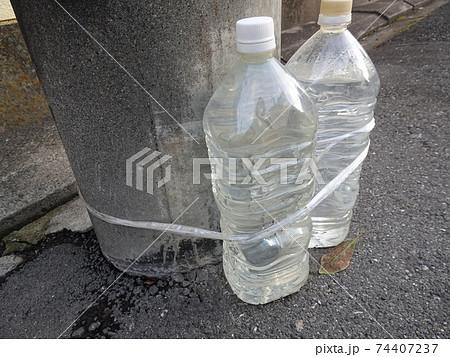 電柱に沿って置かれた猫除けの水入りペットボトル 74407237